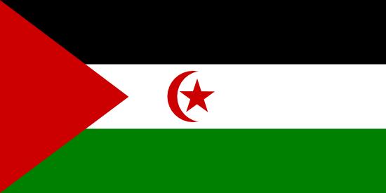 Private Tutors in Western Sahara