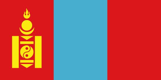 Private Tutors in Mongolia