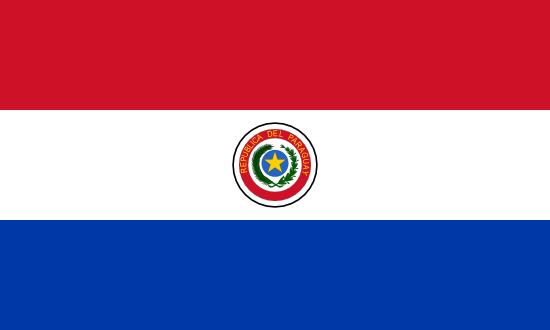 Private Tutors in Paraguay