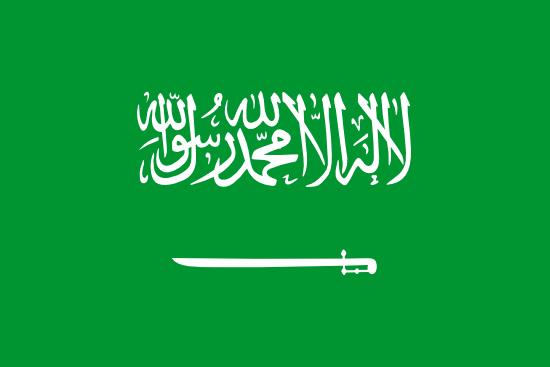 Private Tutors in Saudi Arabia