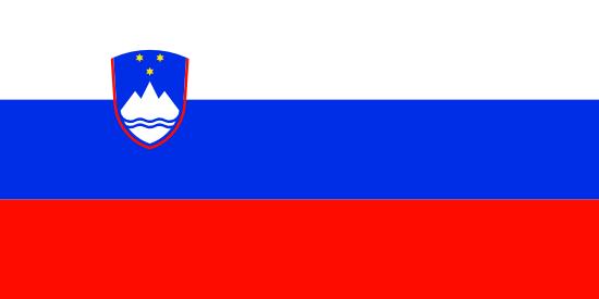Private Tutors in Slovenia