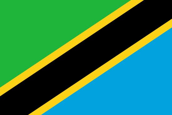 Private Tutors in Tanzania