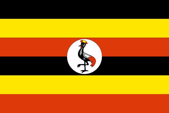 Private Tutors in Uganda
